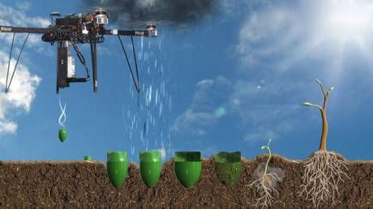 """Représentation graphique des drones, qui """"tireront"""" des """"capsules"""" contenant des graines pré-germées et des nutriments. BioCarbon Engineering"""
