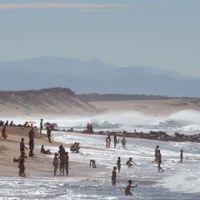 L'acidité des océans pourrait entraîner la fin de l'humanité