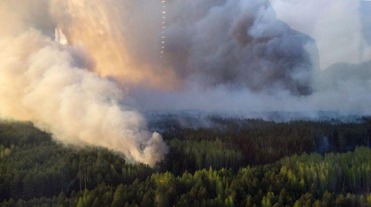 Photo fournie par le service de presse du Premier ministre ukrainien le 28 avril 2015, montrant un feu de forêt près de la centrale de Tchernobyl. afp.com/ANDREW KRAVCHENKO