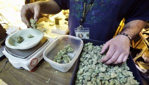 An employee weighs portions of retail marijuana to be packaged and sold at 3D Cannabis Center in Denver, Tuesday Dec. 31, 2013. Colorado is making final preparations for marijuana sales to begin Jan. 1, a day some are calling