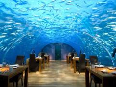 Restaurant Conrad, Maldives pour déjeuner sous les poissons